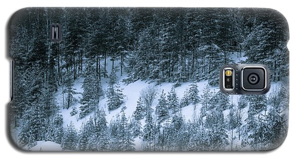 The Trees Of The Snowy Hill Galaxy S5 Case