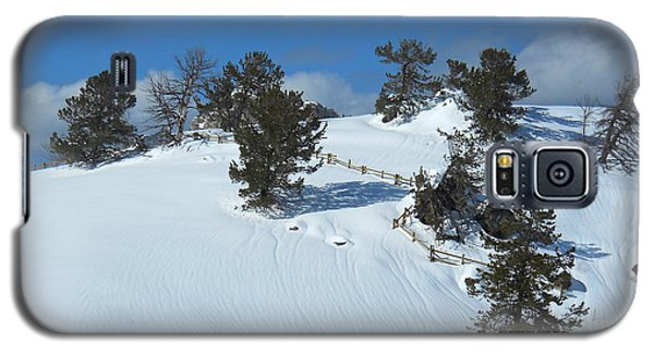 The Trees Take A Snow Day Galaxy S5 Case by Michele Myers