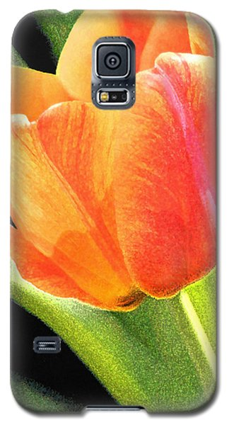 The Tulip Galaxy S5 Case