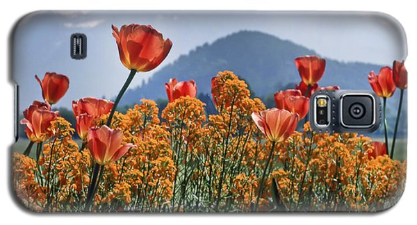 The Tulips In Bloom Galaxy S5 Case