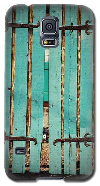 The Turquoise Gate Galaxy S5 Case