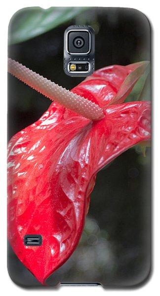 The Unique Antherium Galaxy S5 Case