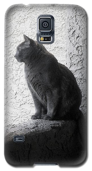 Galaxy S5 Case featuring the photograph The Visitor by Tammy Espino