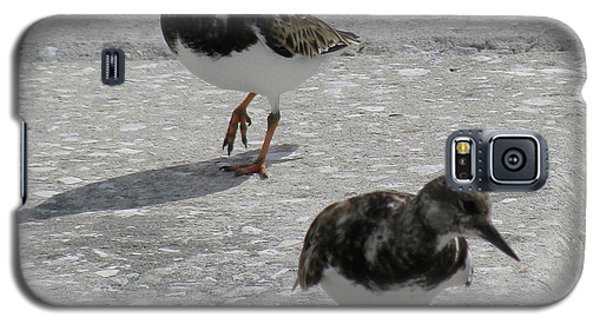 Galaxy S5 Case featuring the photograph The Walk by Donna Brown