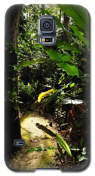 The Walk In Beauty Galaxy S5 Case by Kicking Bear  Productions