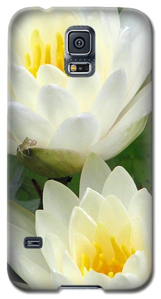 Galaxy S5 Case featuring the photograph The Water Lilies Collection - 09 by Pamela Critchlow