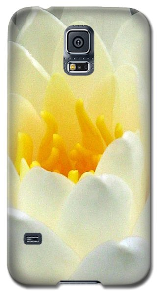 Galaxy S5 Case featuring the photograph The Water Lilies Collection - 10 by Pamela Critchlow