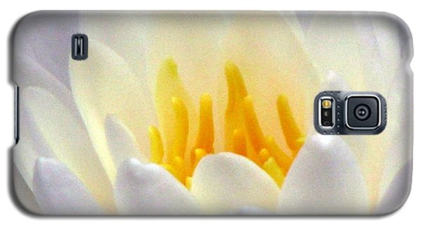 Galaxy S5 Case featuring the photograph The Water Lilies Collection - 11 by Pamela Critchlow