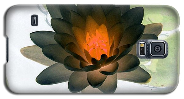 Galaxy S5 Case featuring the photograph The Water Lilies Collection - Photopower 1035 by Pamela Critchlow