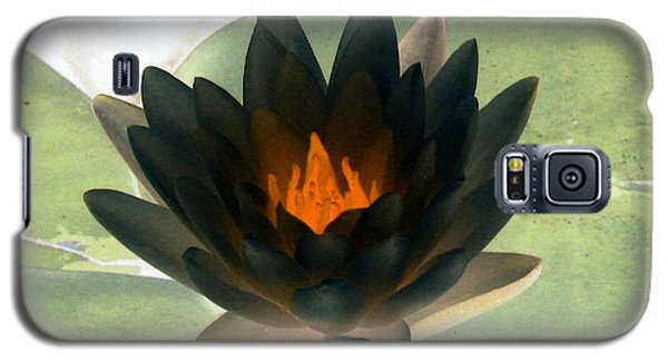 Galaxy S5 Case featuring the photograph The Water Lilies Collection - Photopower 1037 by Pamela Critchlow