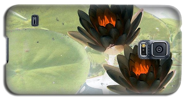 Galaxy S5 Case featuring the photograph The Water Lilies Collection - Photopower 1039 by Pamela Critchlow