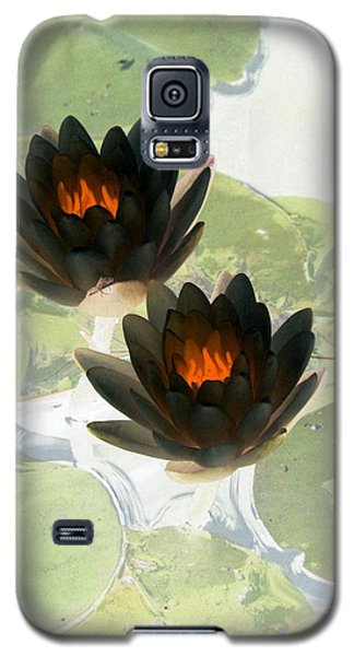 Galaxy S5 Case featuring the photograph The Water Lilies Collection - Photopower 1040 by Pamela Critchlow