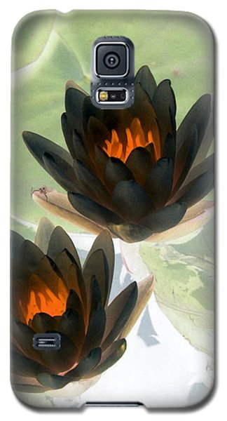 Galaxy S5 Case featuring the photograph The Water Lilies Collection - Photopower 1046 by Pamela Critchlow
