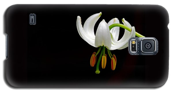 The White Form Of Lilium Martagon Named Album Galaxy S5 Case by Torbjorn Swenelius