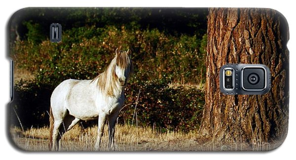 The White Horse Galaxy S5 Case