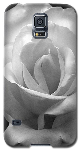 Galaxy S5 Case featuring the photograph The White Rose by James C Thomas