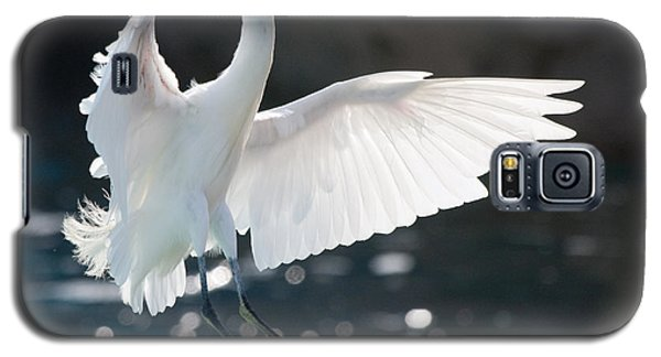 Galaxy S5 Case featuring the photograph The White Winged Wonder by Nathan Rupert