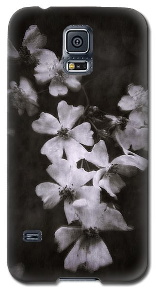The Wild Roses Galaxy S5 Case by Louise Kumpf