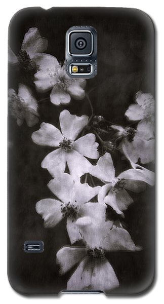 The Wild Roses Galaxy S5 Case