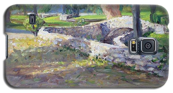 The Winding Zanja In Sylvan Park Galaxy S5 Case