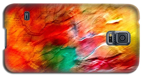 The Winds Of Color Galaxy S5 Case by Carolyn Repka