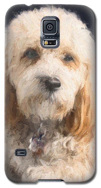 The Wink Galaxy S5 Case