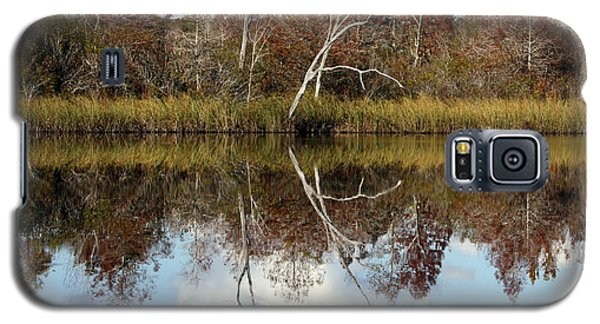 Galaxy S5 Case featuring the photograph The Winter Tree by Debra Forand