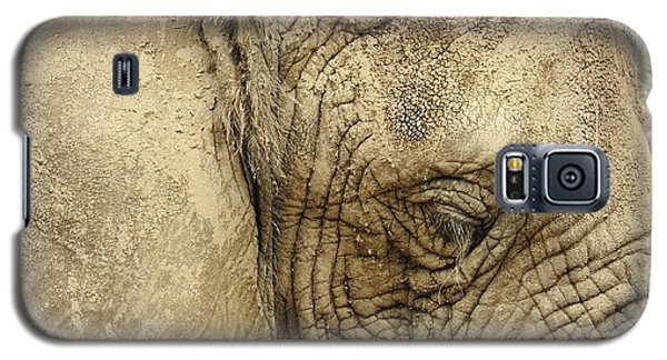 Galaxy S5 Case featuring the photograph The Wise Old Elephant by Nikki McInnes