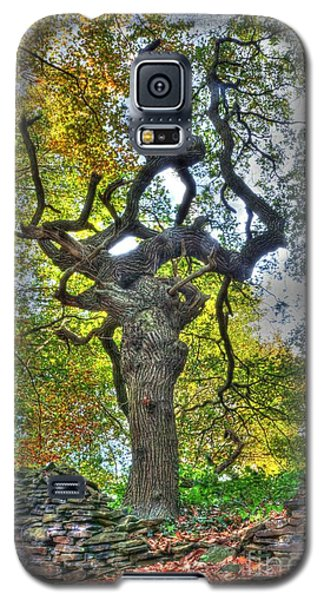 The Witches Tree Galaxy S5 Case