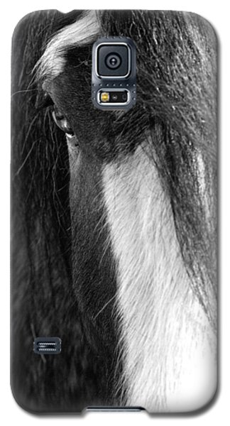 Theoden In Bw Galaxy S5 Case