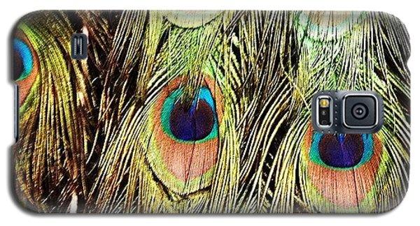 Animal Galaxy S5 Case - Peacock Feathers by Blenda Studio