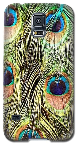 Peacock Feathers Galaxy S5 Case by Blenda Studio