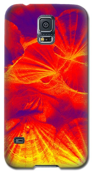 Galaxy S5 Case featuring the photograph Thermal Shells by Hanza Turgul