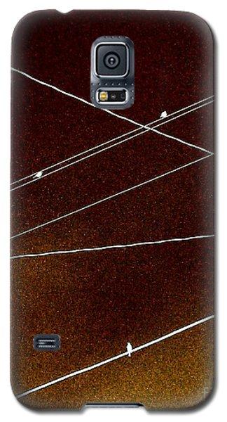 They Called To Me Galaxy S5 Case by Jacqueline McReynolds