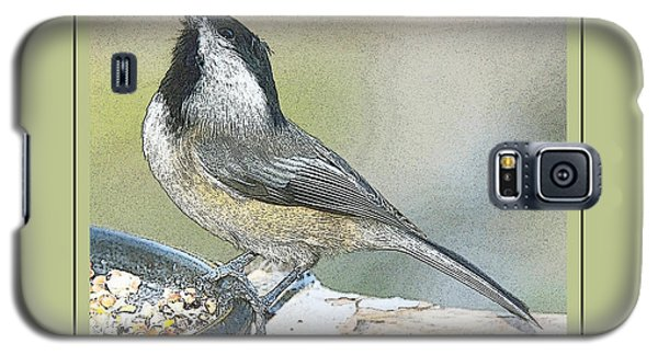 Galaxy S5 Case featuring the photograph Things Are Looking Up Chickadee Print by A Gurmankin