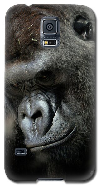 Thinking Galaxy S5 Case by Steven Reed