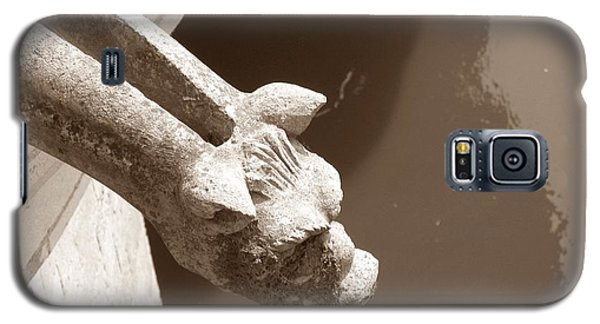 Galaxy S5 Case featuring the photograph Thirsty Gargoyle - Sepia by HEVi FineArt