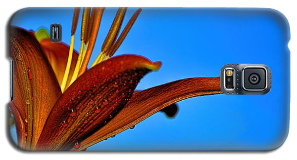Thirsty Lily In Hdr Art  Galaxy S5 Case