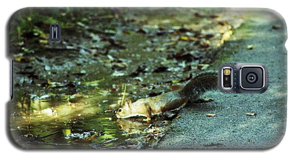 Galaxy S5 Case featuring the photograph Thirsty Squirrel by Lorna Rogers Photography