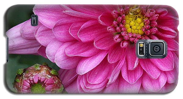 Galaxy S5 Case featuring the photograph This Mums For You... by Sami Martin