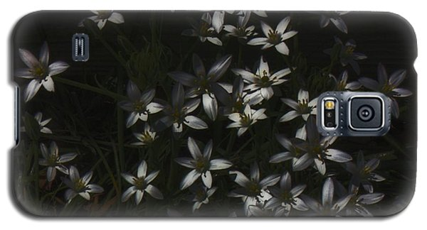 This Year's Bloom Galaxy S5 Case