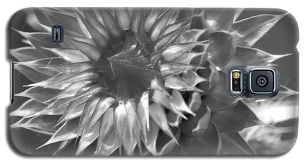 Galaxy S5 Case featuring the photograph Thistle Bw by Tannis  Baldwin