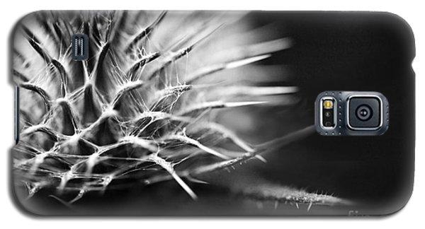 Thistle In Monochrome Galaxy S5 Case by Liz  Alderdice