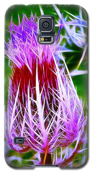 Thistle Galaxy S5 Case by Judi Bagwell