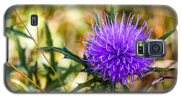 Galaxy S5 Case featuring the photograph Thistle by Phil Abrams