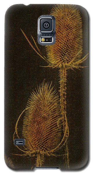 Galaxy S5 Case featuring the photograph Thistles by Hanny Heim
