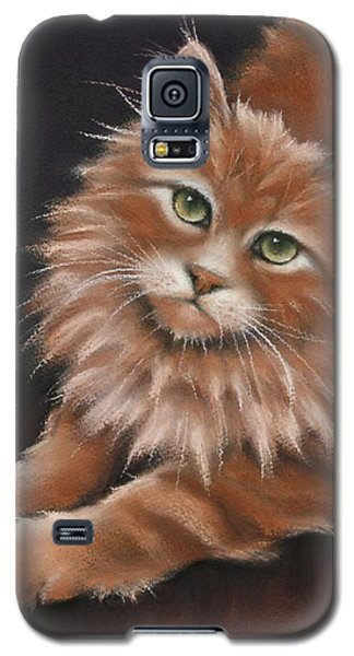 Galaxy S5 Case featuring the drawing Thomas by Cynthia House