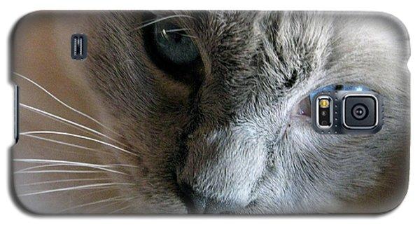 Those Eyes Galaxy S5 Case