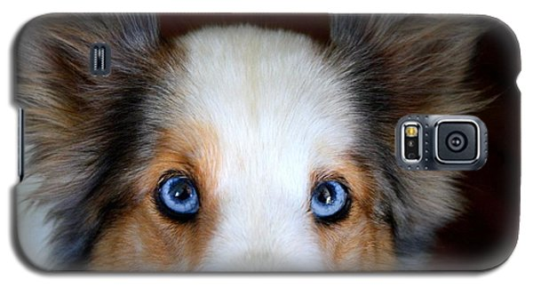 Those Eyes Galaxy S5 Case by Kathryn Meyer