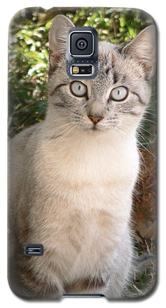 Those Eyes Galaxy S5 Case by Laurel Powell